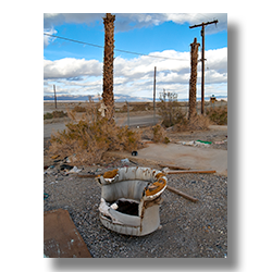 A photo of a discarded barrel chair in front of dead palm trees by Jim Witkowski.