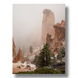 A late snowfall in Bryce Canyon veiles the hoodoos.